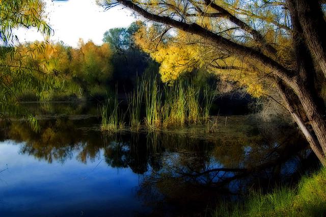 Pena Blanca Lake Sky Islands Arizona