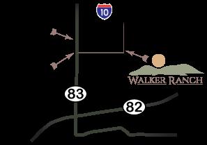 Walker minimap